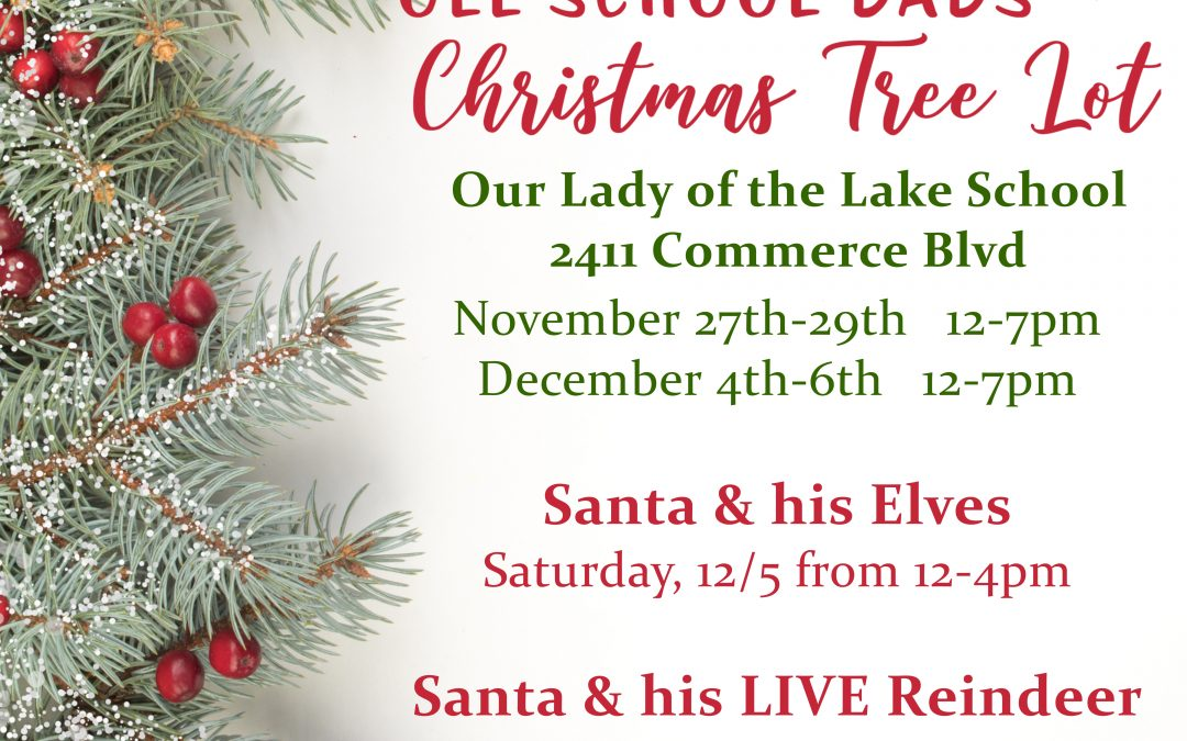 Our Lady of the Lake's Christmas Tree Lot