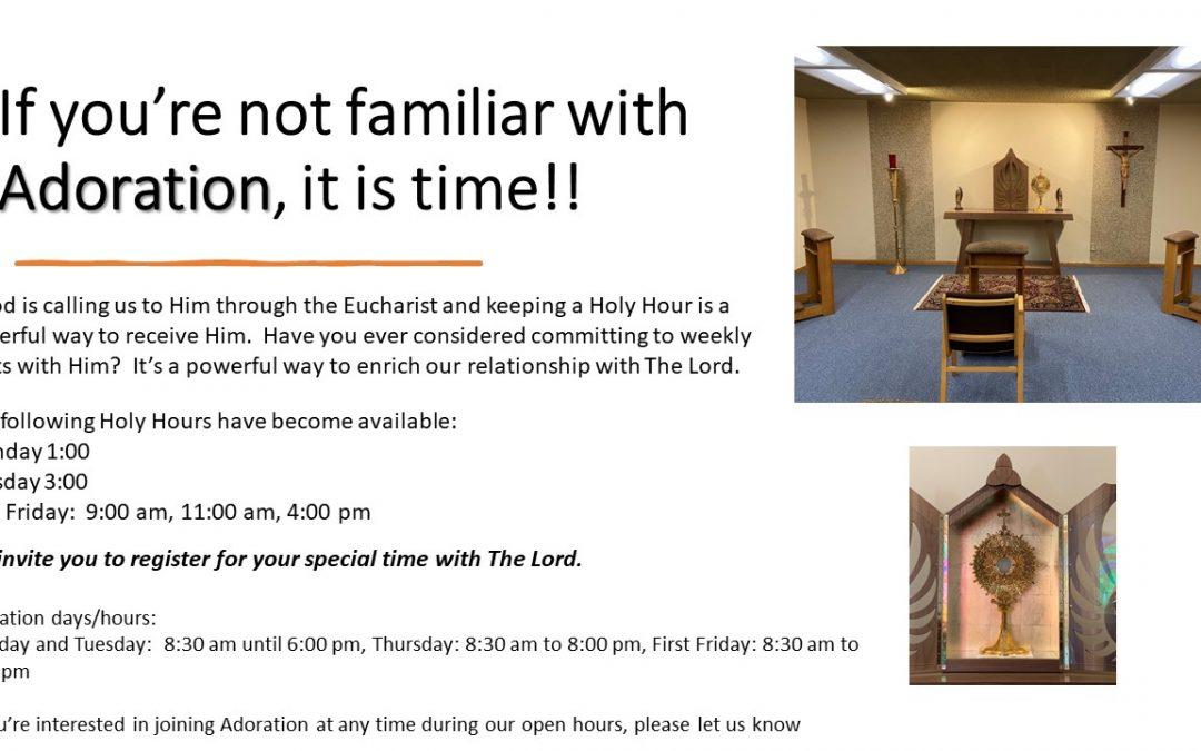 Discover Adoration Today!